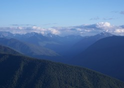 Olympic National Park- Photographs from Hurricane Ridge