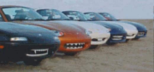 Various Car Teeth models on display