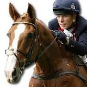 HorseRider33 profile image
