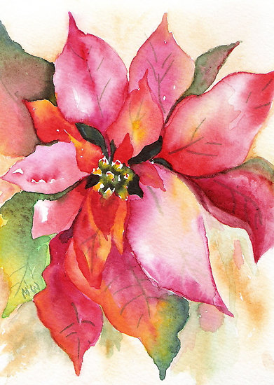 Christmas Poinsettia - watercolor by Marsha Woods - photo from redbubble.com