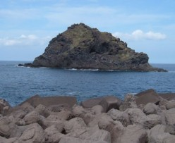 In Tenerife the rock pools of Garachico are full of marine life