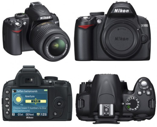 My latest splurge at B&H Photo, A Nikon D3000. A good camera that exceeds my expectations.  There are a few features I'd fix on it, but who's complaining?