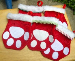 Little Red Paws!  The best way to brighten your home!