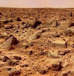Rocky plains of Mars