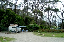 The campsite, encompassed by nature