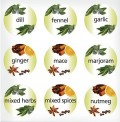 An Easy Guide To Some Herbs, And Spices