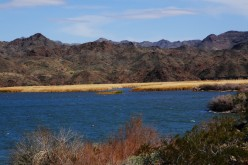 Lake Havasu Arizona Houseboat Vacations and Spring Break Adventures