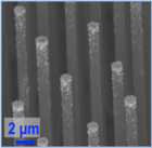 Silicon Nanowire with Platinum Catalyst
