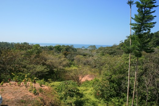 View of ocean in distance from the balcony of the house.