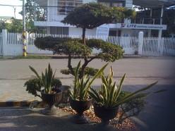 Bohol Hotel: Soledad Suites