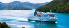 We travelled on the Interislander a lot . My favorite was the way into the Marlborough sounds !