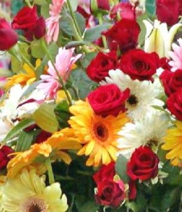Flowers are always a good gift idea