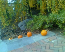 Pumpkins adorning the stairs