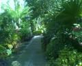 An Autumn Stroll Through Tower Hill Botanical Garden