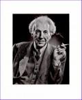 Frank Lloyd Wright Quotations