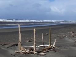 Driftwood...a poem