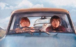 Ron and Harry with Hedwig