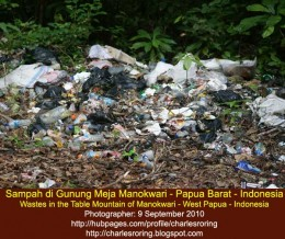 Plastic wastes in the rainforest of Table Mountain near Manokwari city - the capital of West Papua province - the Republic of Indonesia