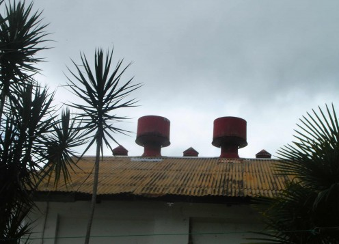 Spikey tin rooftop