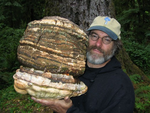 Paul Stamets with Laricifomes officinalis