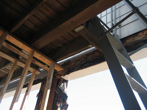 Dry rot wood rot repairs where needed