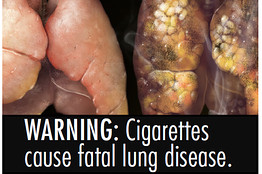People who smoke already know that what they're doing isn't good for them. But they also may be in denial about their particular risk of disease, since accepting the fact of a threat to health is very distressing, he says. Either way, the images alon