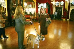 Owner, Harle Tinney and a surprise client wait for Daphne to arrive at Belcourt Castle.