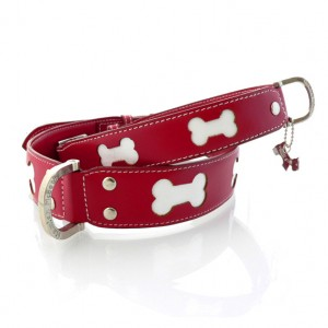 Trendy Red Dog Collar