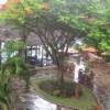 mudahe profile image