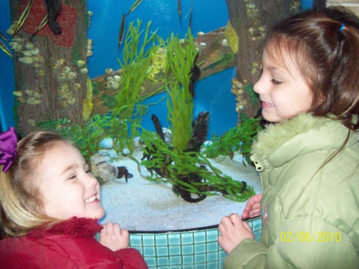 Visiting aquariums and museums are great indoor activities for kids.