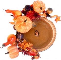 My Turkey Day Holiday