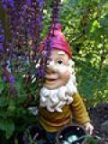 Tomte(gnome)