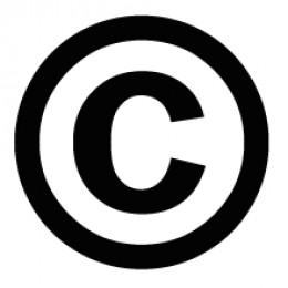 The internationally recognized copyright symbol.