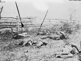 Confederate soldiers on the Antietam battlefield as they fell inside the fence on the Hagerstown road, September 1862
