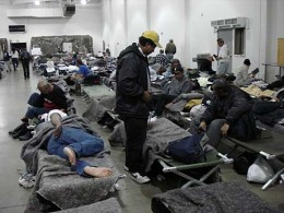 volunteering at a shelter