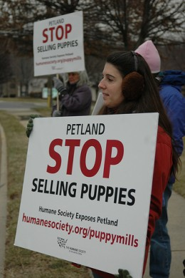 Protesters outside Petland after employee pleaded guilty for two counts of animal cruelty.