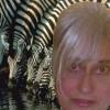 lynnibug profile image