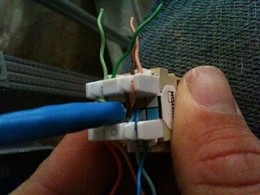 Twisted pair inserted into IDC notches on the jack.