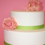 sweetgracecake profile image