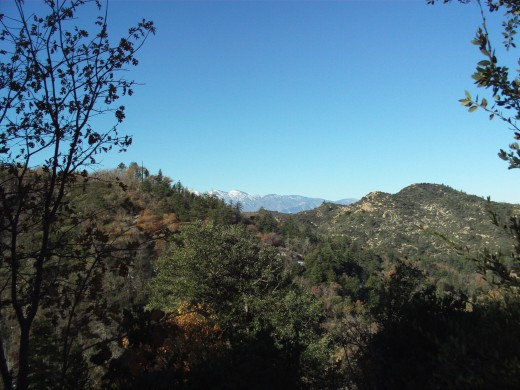 Looking out towards Mount Baldy.