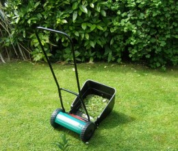 A sidewheel mower - suitable for rougher lawns and long grass.