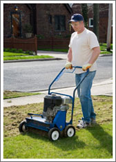 A powered scarifier is a very effective way of removing thatch and moss from the lawn