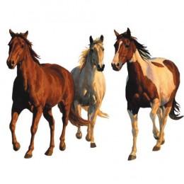 Horse Wall Murals