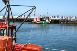 Kalk Bay fishing harbour near Cape Town. Photo Tony McGregor