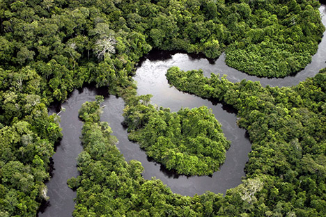 It is the greatest Hydrographical basin of the planet. Amazonian comes from the indigenous word amassunu which mean, noises of the waters