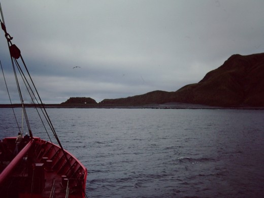 Approaching MacQuarie Island around 2 O'clock in the morning.