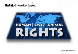HubPages Weekly Topic: Human, Civil, Animal Rights!