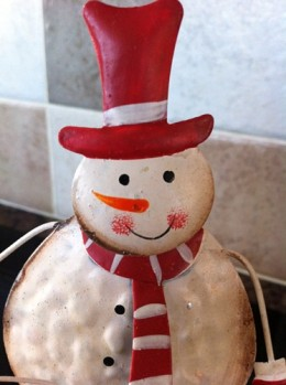 At least the snowman is happy!
