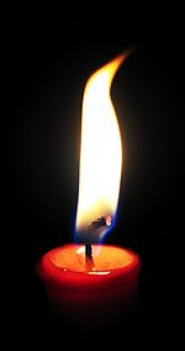 Candle of Life