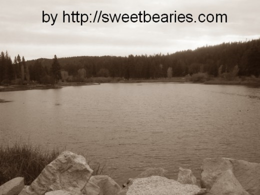 Here is a sepia image I created of a picture I took of Grass Valley Lake.